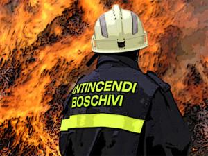 incendi boschivi 4